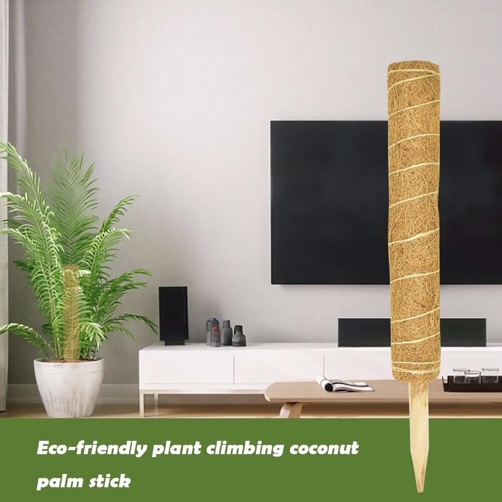 Экологически чистые палочки для альпинизма, Кокосовая пальма, садовые растения, для альпинизма, поддержка цветочной лозы, палочки для кокос...