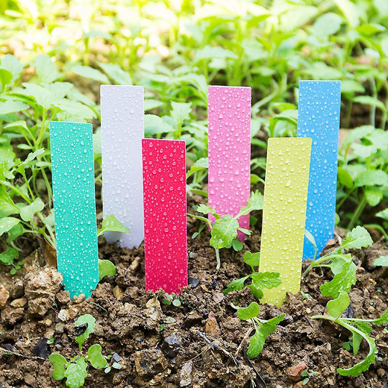 100PCS Gardening Label Reusable Plant Markers Inserting Ground Plate Waterproof Plant Markers 4 x 0.8 inches 100pcs thicken gardening flower label plant label succulent plastic label flower brand gardening label