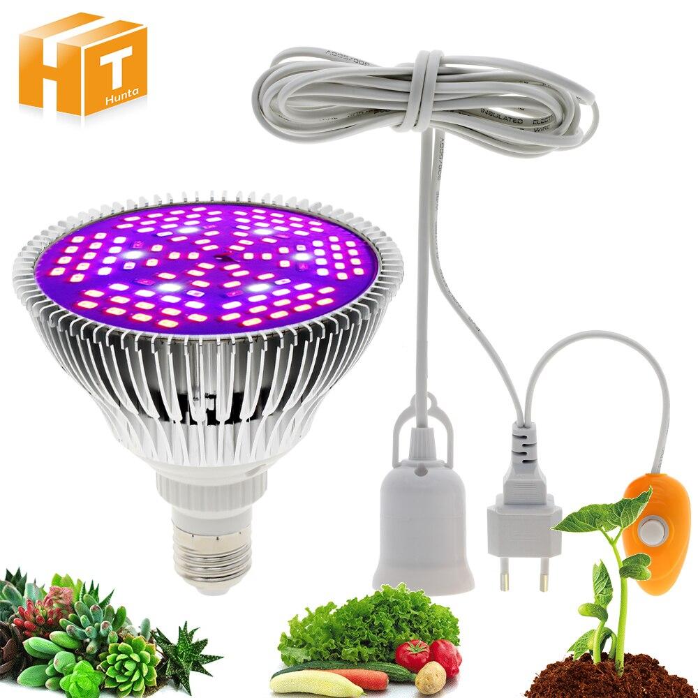 Tira de luz LED para crecimiento 5050 DC12V DIY lámparas de crecimiento para cultivo de plantas hidropónicas de invernadero.