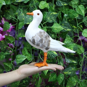 Simulation Seagull Real Feather Pure Handicraft Ornaments Children's Early Education Film and Television Figurines & Miniatures