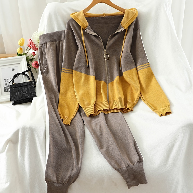 2020 spring autumn New Casual Tracksuit for Women Two Piece Set Hoodies loose knitting 2 Pieces Sports Suit TZ568