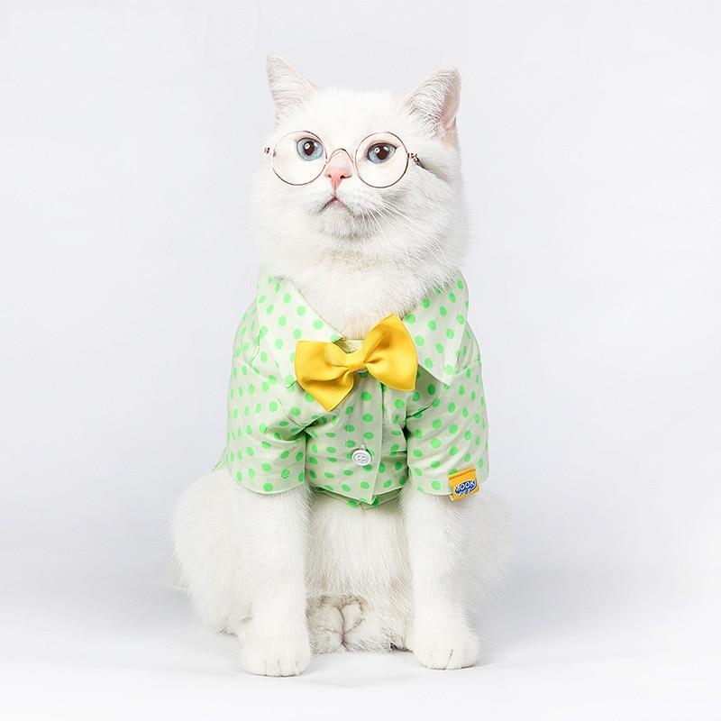 Cat T-shirts