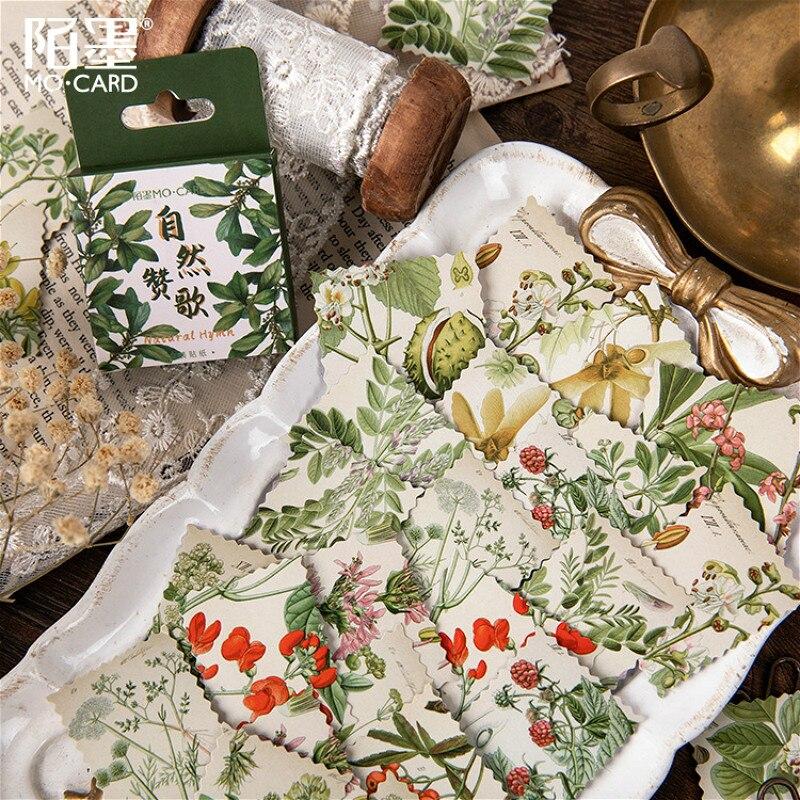 Autocollant de papeterie naturel vert 45 à pièces/boîte, papier adhésif Kawaii fait main, étiquette japonaise en flocons, papeterie de Scrapbooking