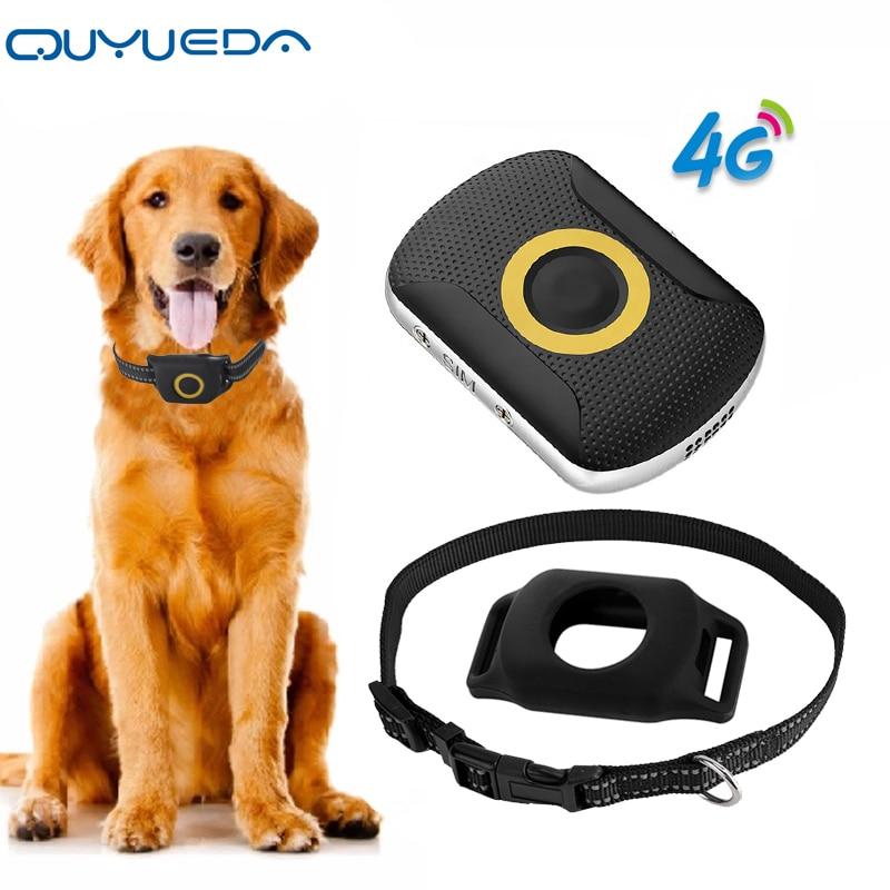4G Pet GPS Tracker Waterproof Dog GPS Tracking Collar Mini Cat Anti-Lost Alarm Locator Support Geo-Fence SOS Smart Kids Locator