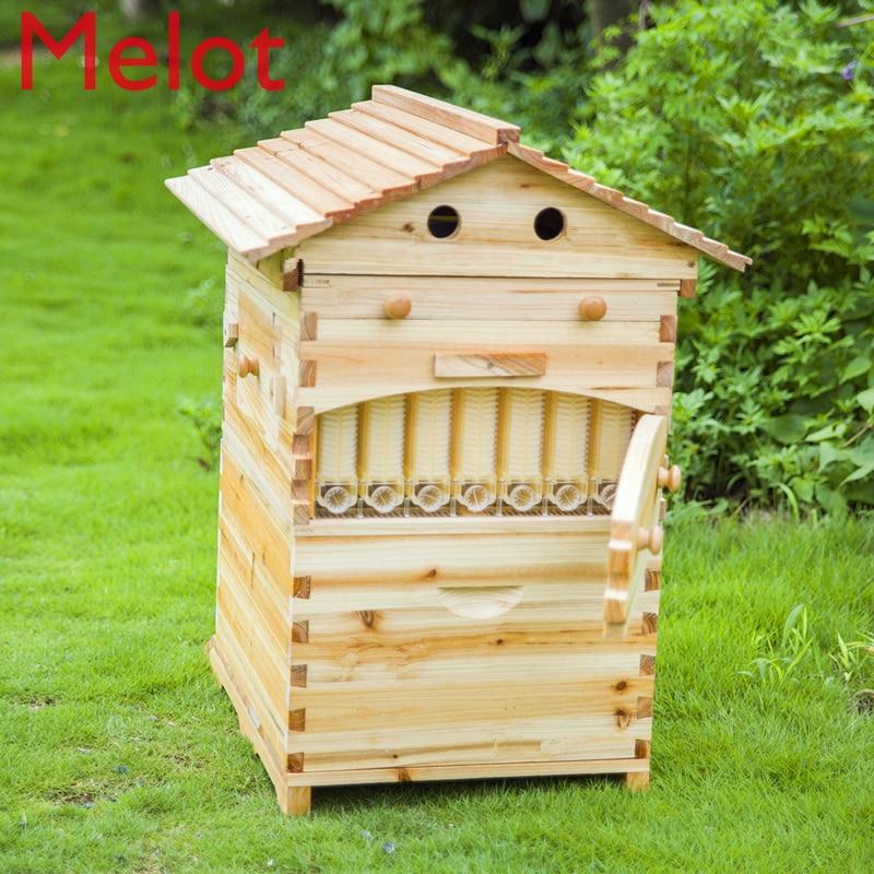 Inteligente automático de madeira colméia mel que flui a colméia da abelha com 7 pces molduras plásticas da colméia boa escolha para o jardim da casa