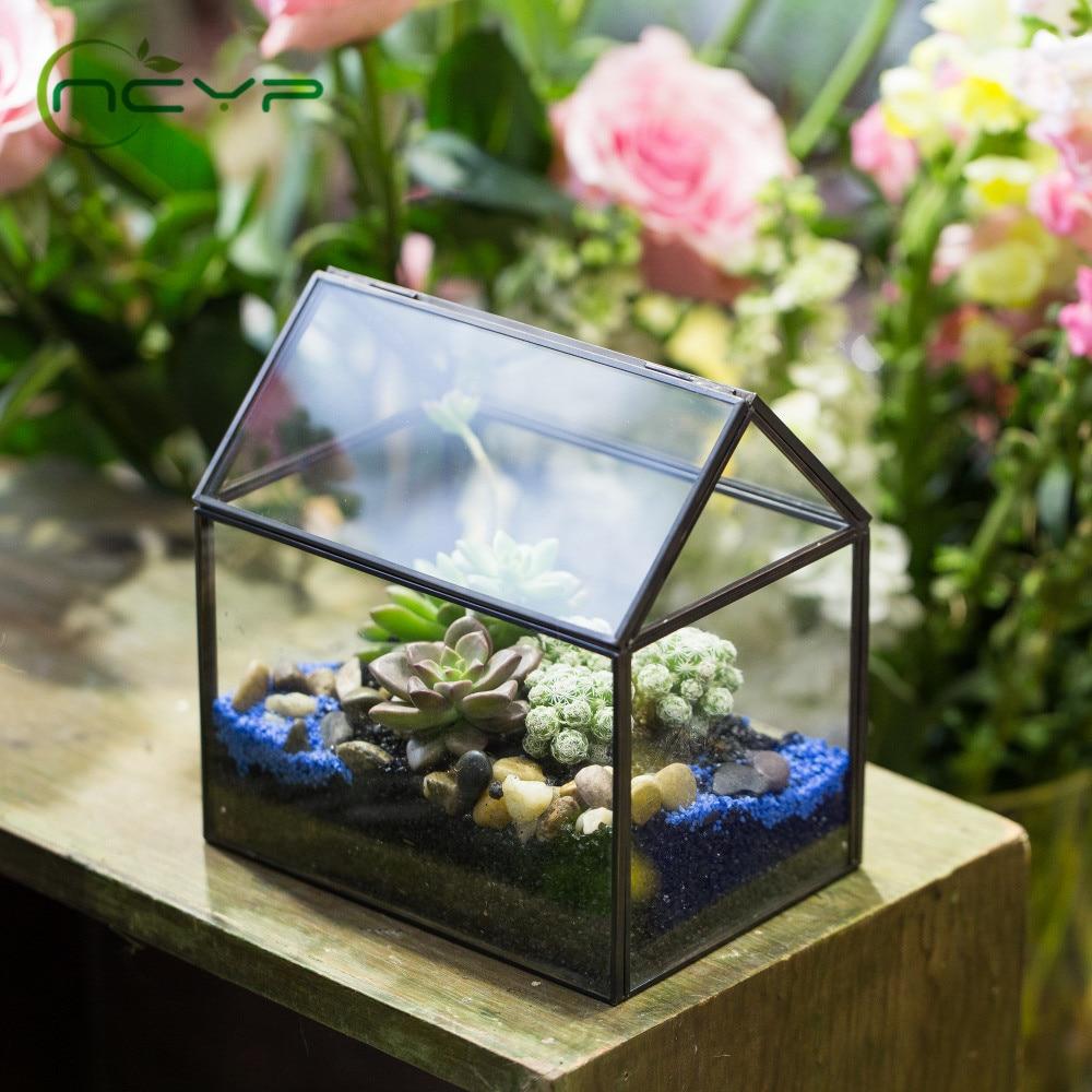 NCYP современная стеклянная коробка неправильная черная Геометрическая суккулентная ваза коробка Террариум контейнер отличный подарок стеклянный террариум