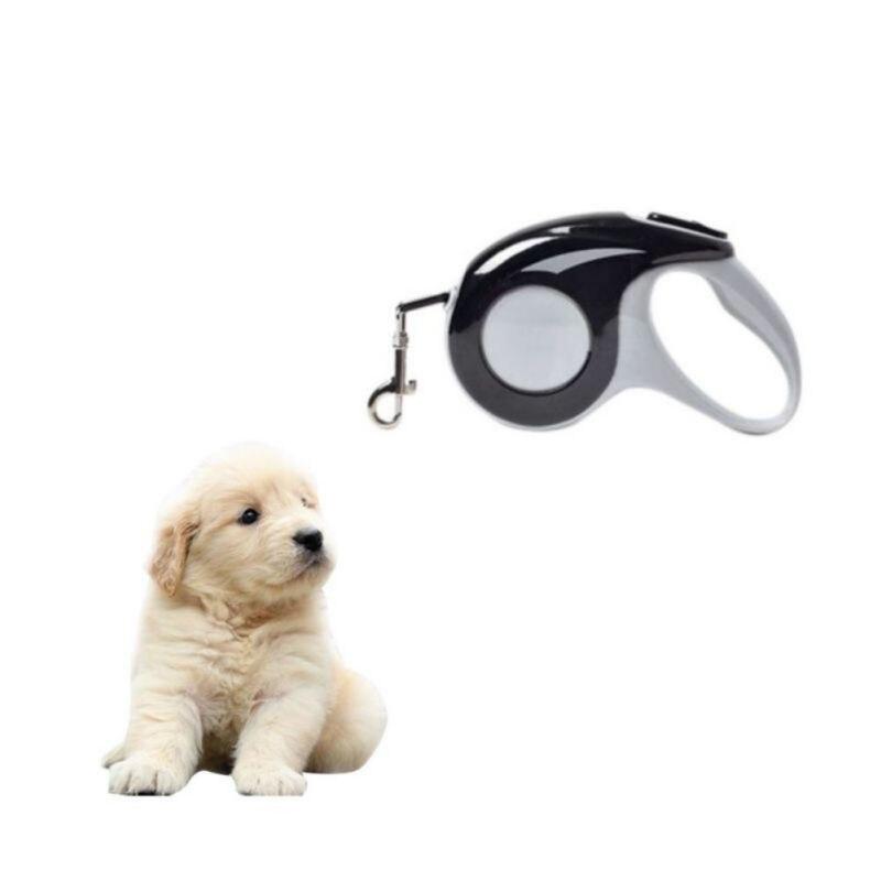 5 M Cão de Estimação Corda Elástica Flexível Automática Coleira Com Trela Do Cão de Filhote de Cachorro Do Gato Do Cão Para Pequenas E Médias Cães suprimentos para animais de estimação