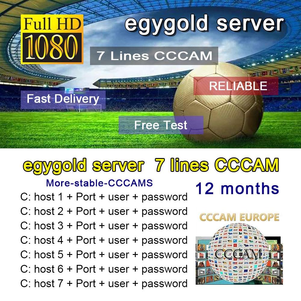 CCCAM TV Receiver AV Cable line in europe cline egygold 7 lines Freesat cccam cline for DVB-S2 Gtmed