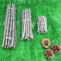 20 pcspack original natural small sticks diy material suitable for garden wedding table decoration craft