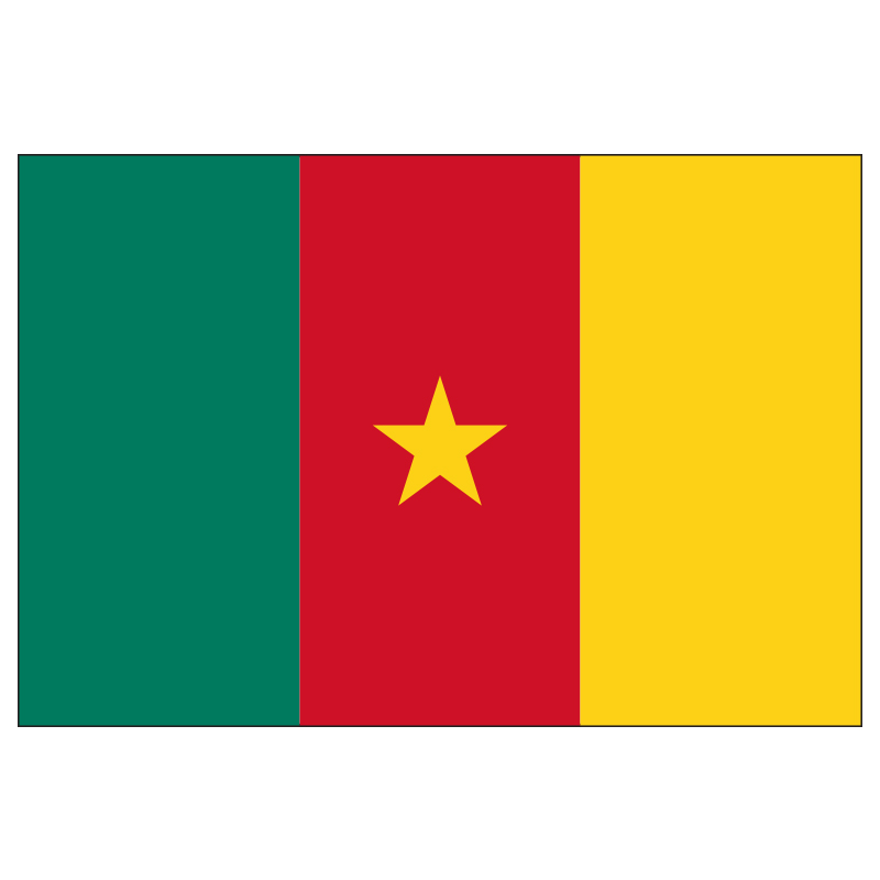free  shipping xvggdg 90 x 150cm Cameroon flag Banner Hanging National flags banner