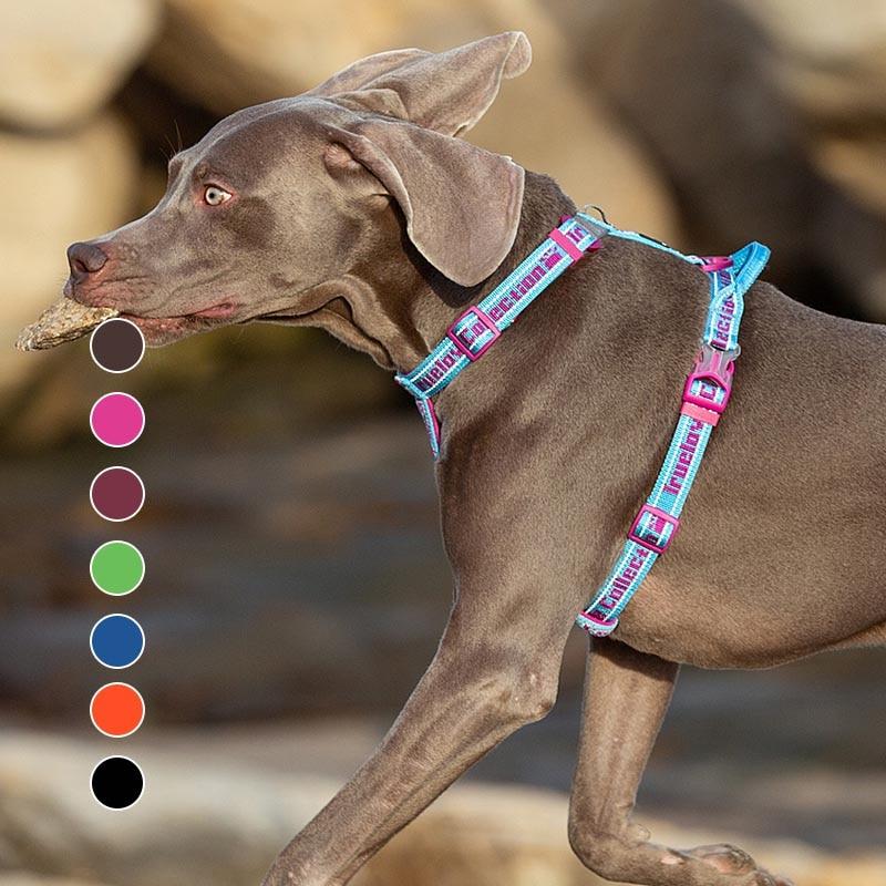 Truelove-arnés acolchado para perro de nailon ajustable, arnés para mascota para coche,...