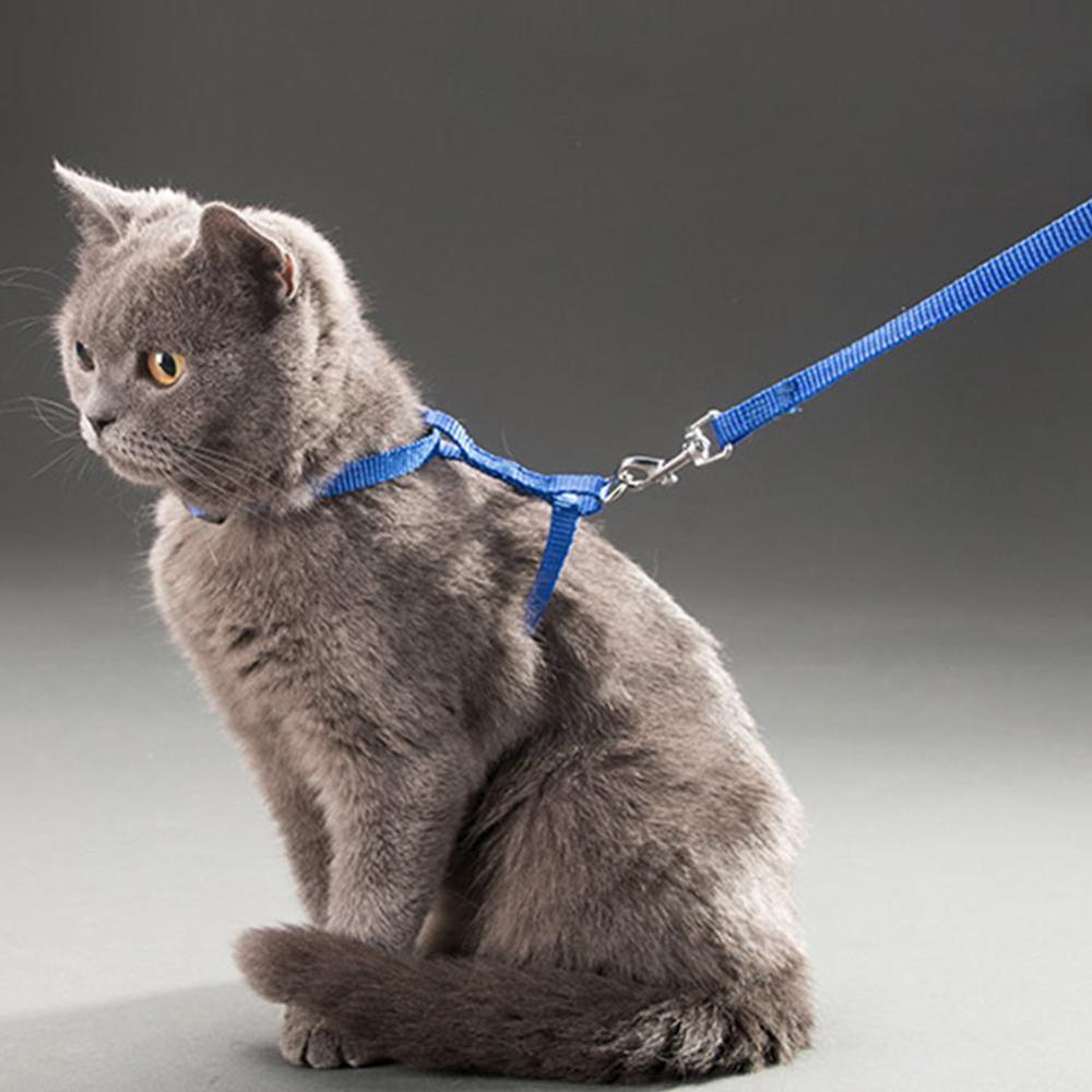 Nylon gato conjunto de arnés y correa para mascotas productos para animales ajustable de tracción cinturón de arnés gato gatito Halter Collar de gato