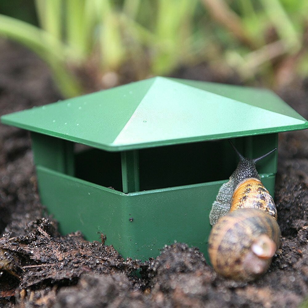 giant african land snails Beer Slug & Snail Traps Eco-Friendly to Catch Slugs Snails Catcher, Safe for Kids and Pets  Snails Garden Environmental