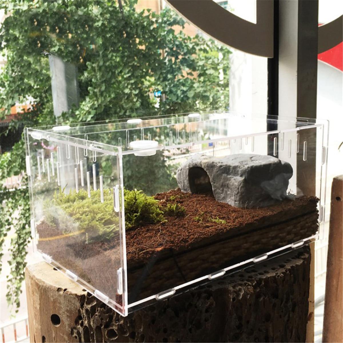 Tamanho p/l reptile tanque inseto aranha, tortoise, lagarto, acrílico, transparente, tampa de vivarium, produto de estimação, terrário