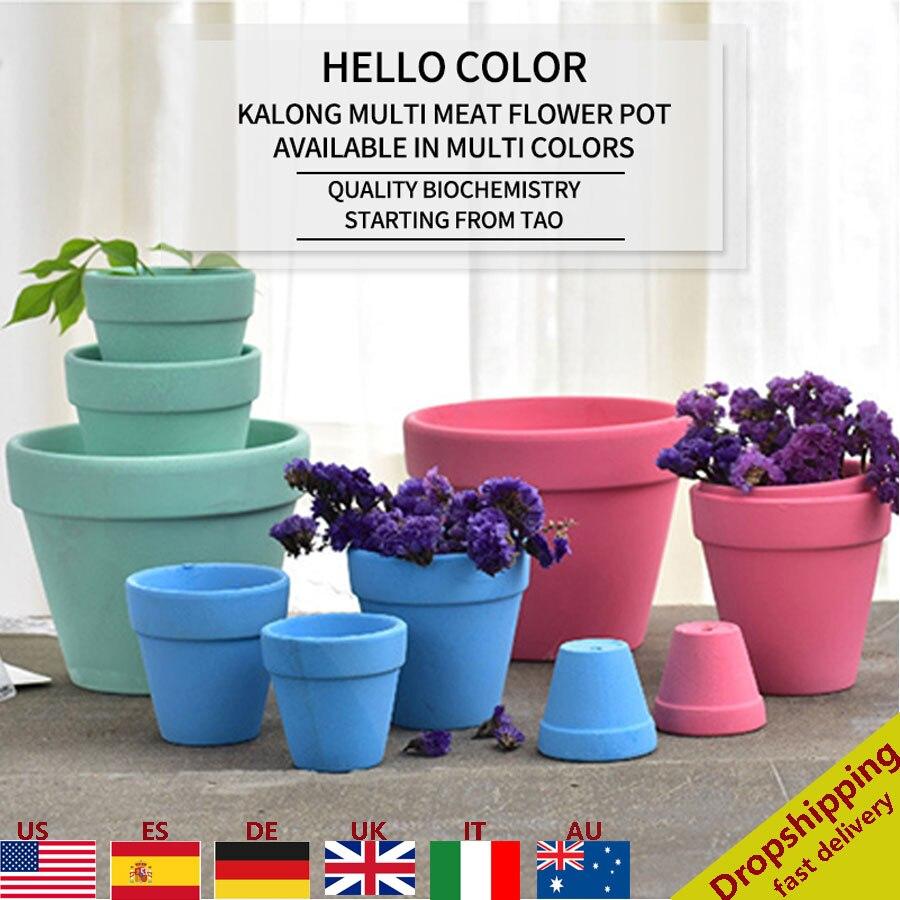 Multi colores Cactus Pot suculentas macetas pequeño Mini arcilla de cerámica de terracota Pot casa Decoración
