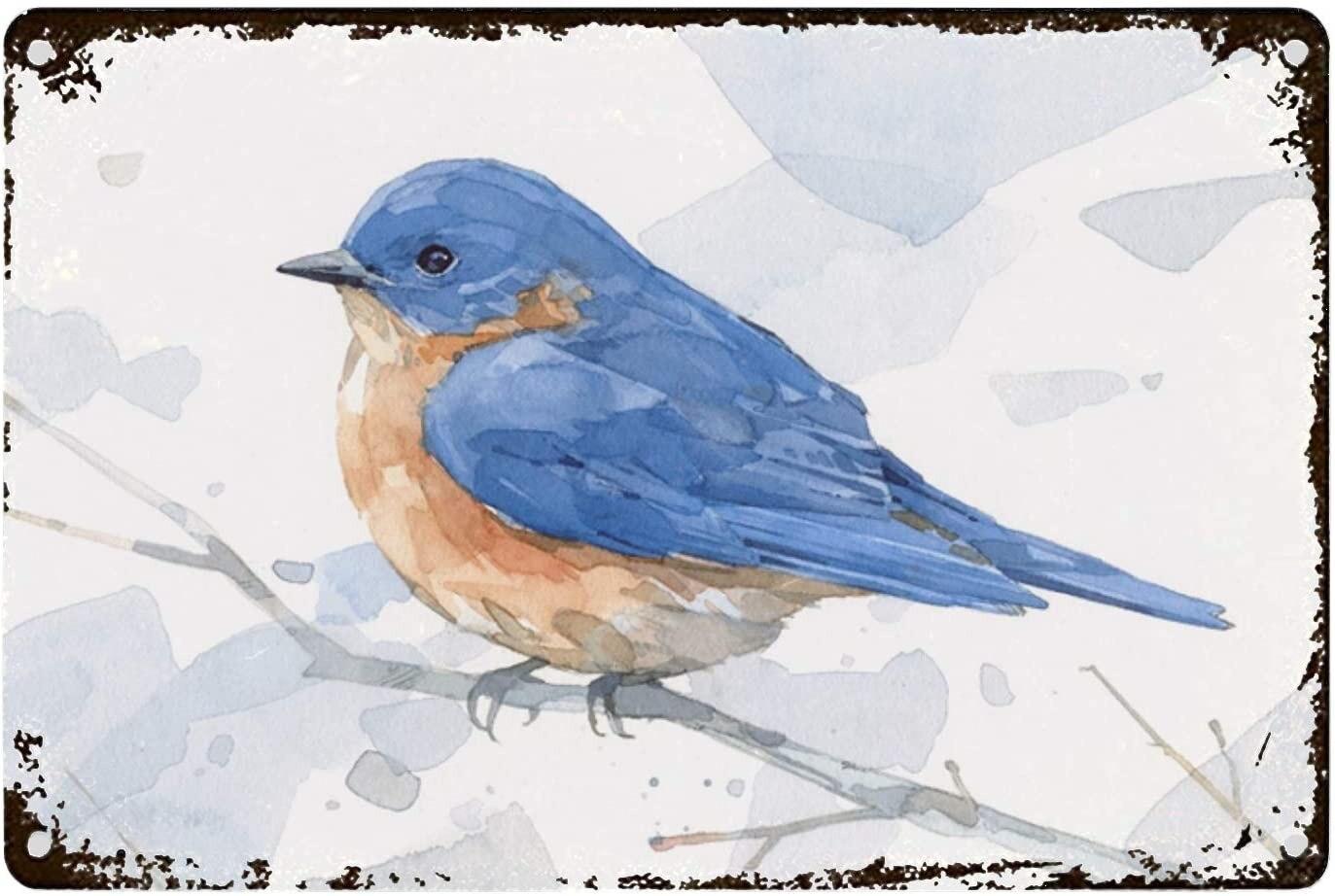 Miaoquhe Bluebird-cartel de acuarela del cártel de hojalata de Metal Vintage cartel de pared de placa