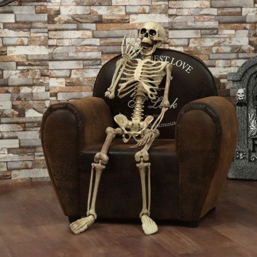 Halloween Prop Decoration Skeleton Full Size Skull Hand Life Body Anatomy Model Decor