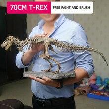 70cm 4D DIY big T-rex dinosaur fossil skeleton simulation model children puzzle toy gift Biology Education decoration