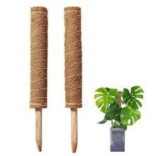 Extensible escalade plante Coir Totem tige Support jardinage noix de coco palmier bâton pour Creepers dintérieur