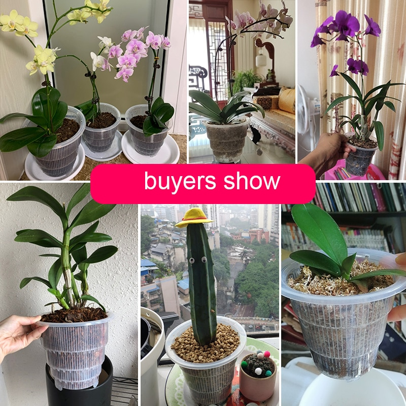 Meshpot 7 PCS 5 Inches Clear Slotted Orchid Pot With Holes Plastic Flower Pot With Tray Garden Pot Planter Excellent Drainage