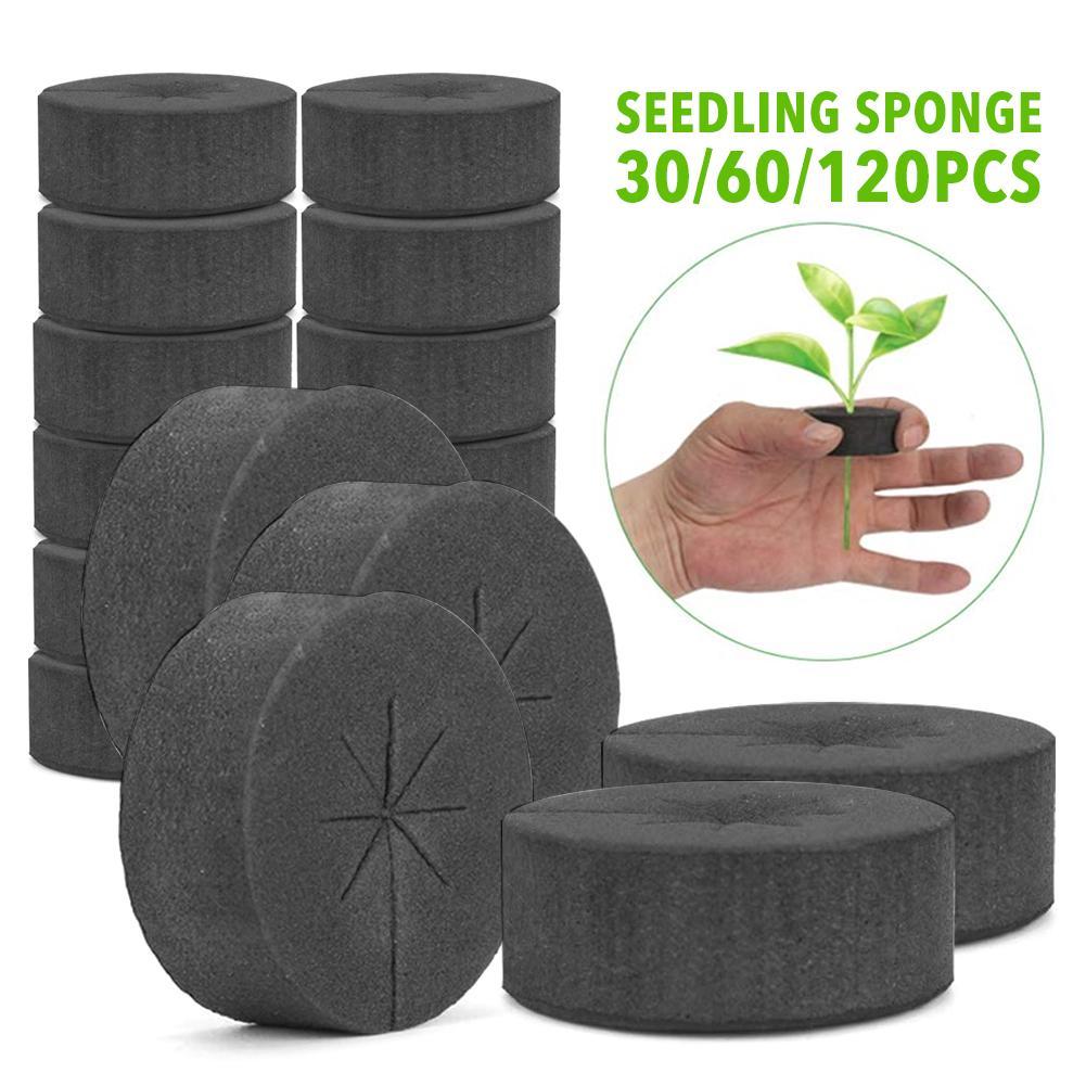 48*20mm jardín clon Collars neopreno Inserts bloque de esponja para 2 pulgadas Net Pots Hydroponics sistemas y máquinas de clonación