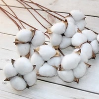 Fleurs sechees naturelles en coton  10 pieces  branches de plantes artificielles  fausses fleurs pour decoration de mariage  de maison