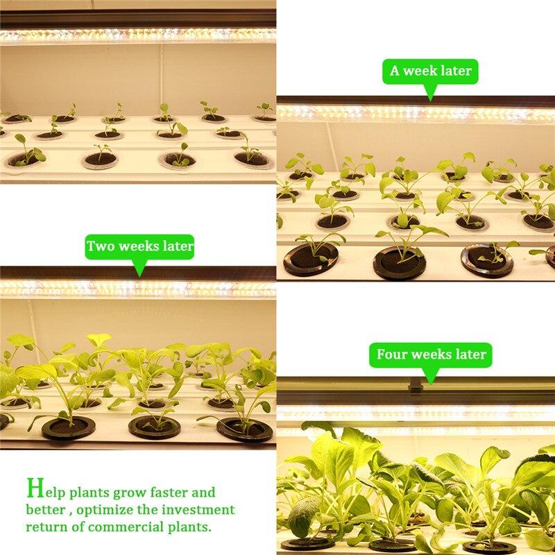 3pcs/lot Full Spectrum 1.2m 60W T8 Tube Bar Led Phyto Lamp for Indoor Plants Flower Growth Seeds Aquarium Tent enlarge