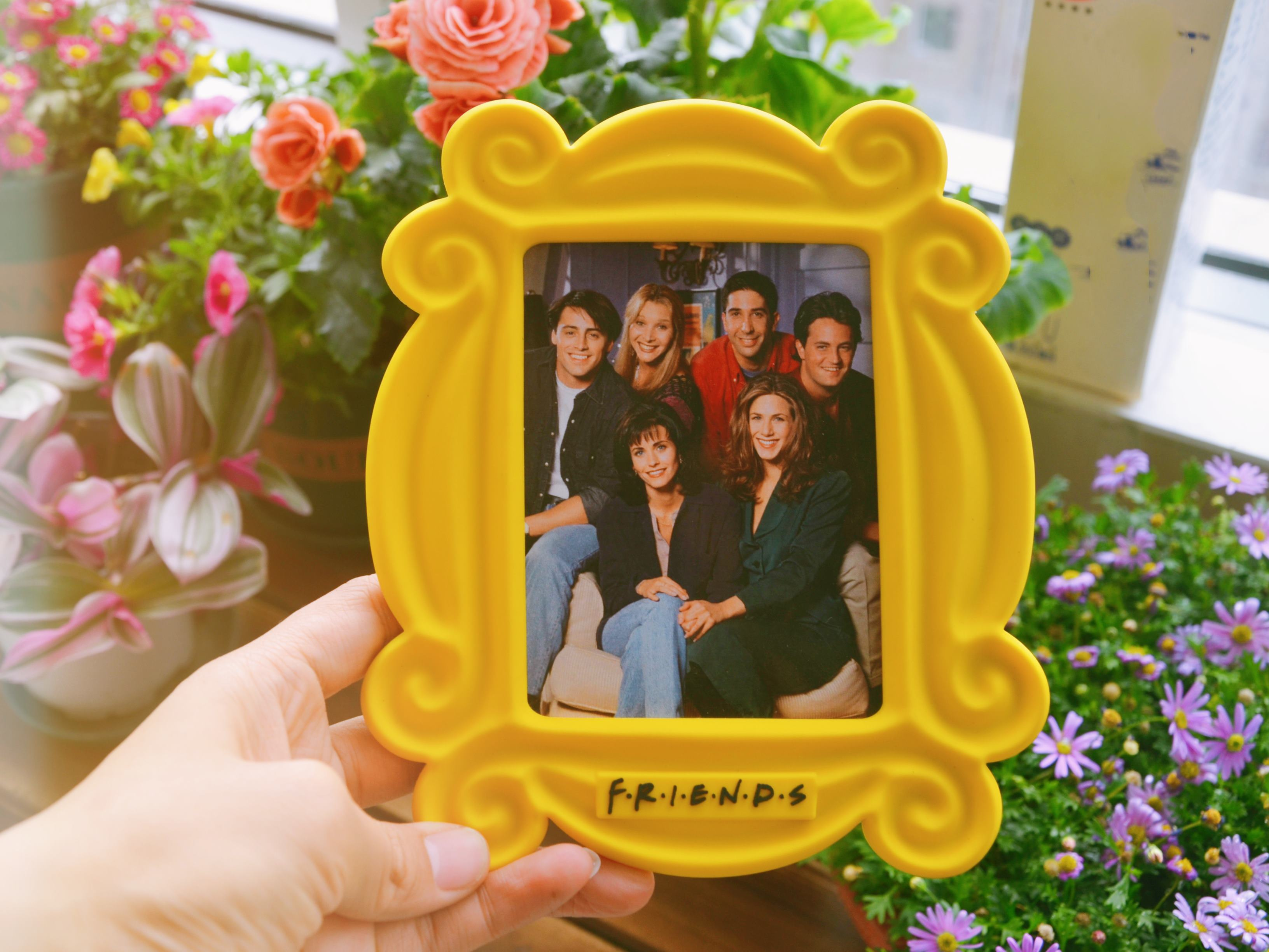 Amis émission tv perk central cadre jaune de monica mini cadre photo