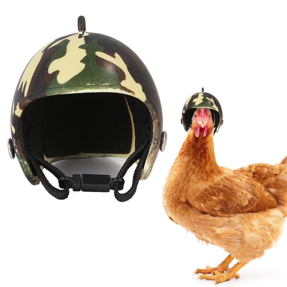 Bonito y creativo gorro de pollo, casco con protección para la cabeza, pequeño Sombrero duro para mascota, sombrero de pájaro, sombrero para pollo, pato y otras aves de corral