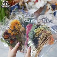 Mr. papier 8 Designs 6Pcs Wochenende Blumen Deco Aufkleber Scrapbooking Styling Kugel Journal Spielzeug Deco Album DIY Schreibwaren Aufkleber