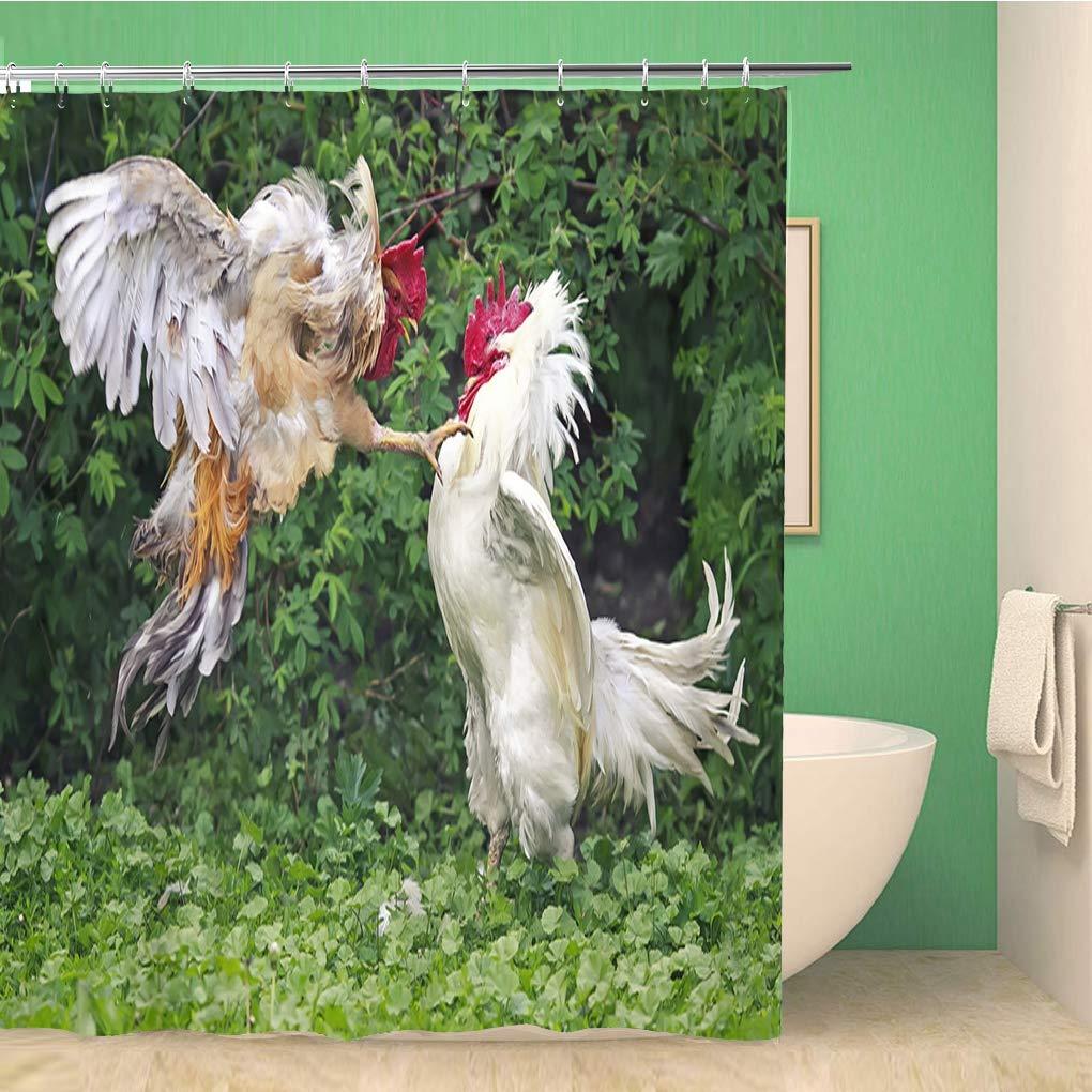Banheiro cortina de chuveiro galo dois galos branco e vermelho luta fazenda batalha 60x72 polegadas à prova dwaterproof água banho cortina conjunto com ganchos