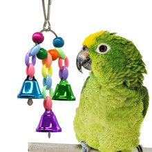 Pássaro Balanço Brinquedo Colorido Sino Talão Balanço Hammock Parrot Gaiola de Pássaro Pingente Criativo Brinquedo Criativo Игрушка попугай