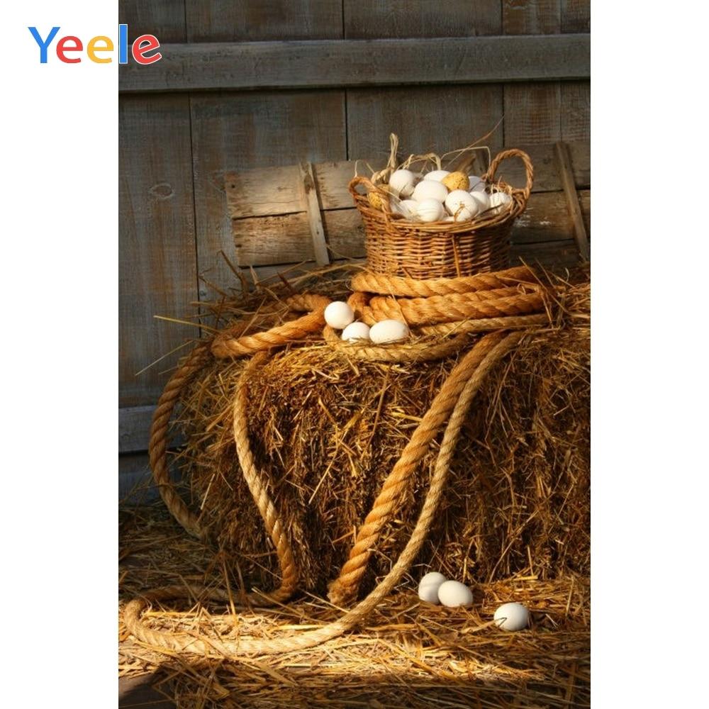 Fondo de Yeele, Otoño, granja, Granero, huevo, pajar, fiesta de bienvenida para el futuro bebé niños, retrato de cumpleaños, Fondo de fotografía para estudio fotográfico