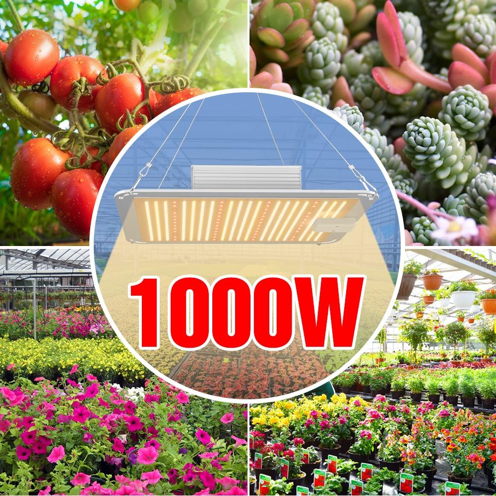 LED Plant Light 1000W 2000W 4000W Grow Lamp LED Full Spectrum Seedling Fito Light 220V Phyto Flower Hydroponics Growing Tent Box enlarge