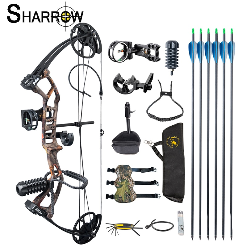 1 Set Archery Bow and Arrow 30-40lbs Compound Bow Crossbow With 6pc Carbon Arrows Professional Complete Accessories for Hunting