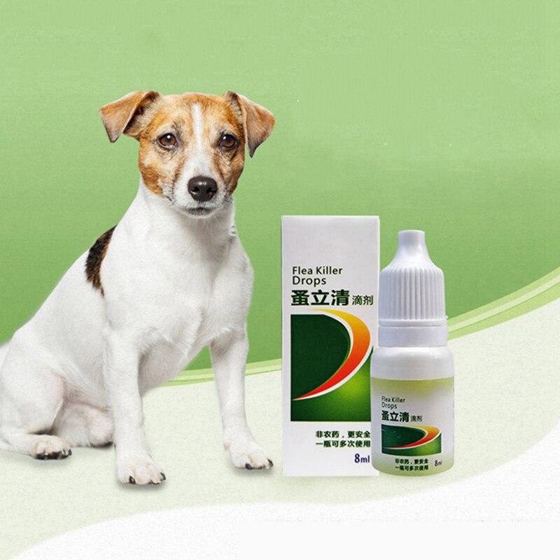 8ml/bouteille traitement des puces pour animaux de compagnie pour chiens chats sûr prévention des tiques