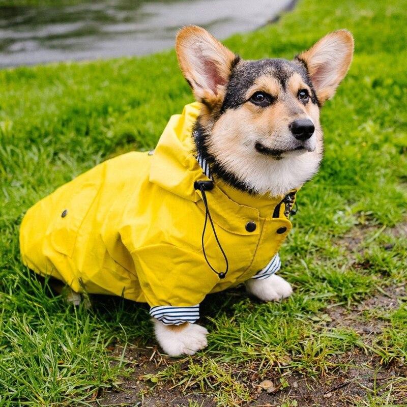 Impermeable para perro mascota Poodle Bichon Schnauzer Corgi galés ropa Shiba Inu samoyedo ropa de perro abrigo impermeable chaqueta traje