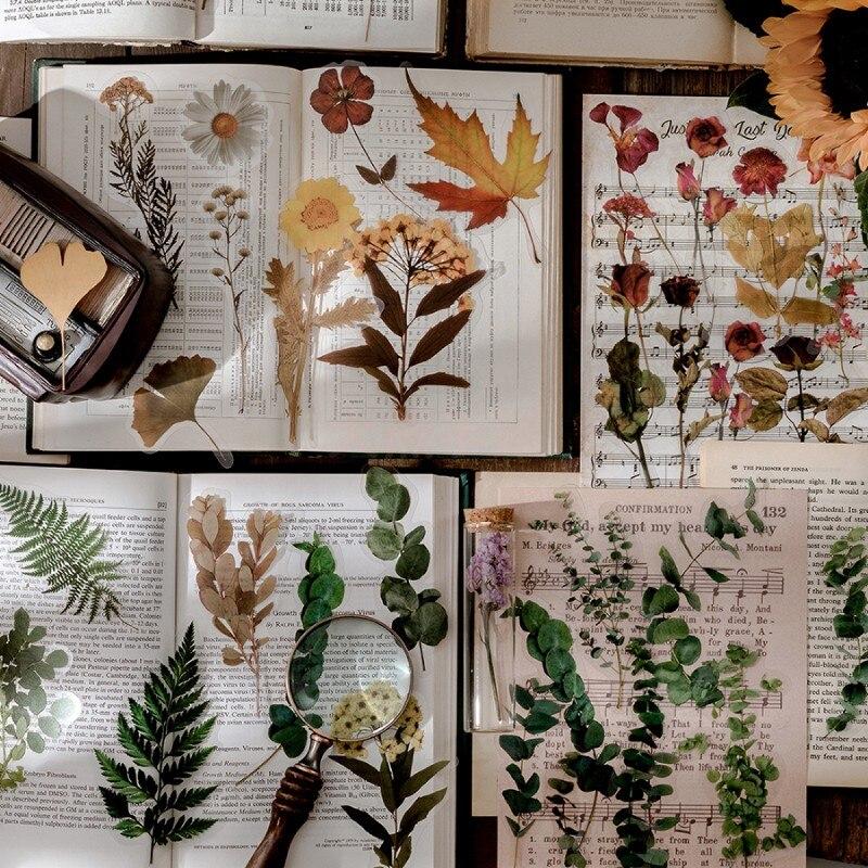 10-fogli-pacco-adesivo-per-animali-domestici-vintage-adesivo-per-piante-floreali-adesivo-per-scrapbooking-fai-da-te-diario-album-cartoleria-pianificatori-decorazione