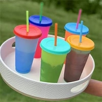 700ml pp straw cup with lid cold water color changing water tumbler simple juice coffee reusable cups mug cap straw color random