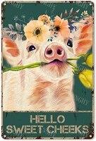 Citation drole de salle de bains en metal  signe en etain  decor mural Vintage Hello Sweet Cheeks Pig Foral  signe en etain pour toilettes  Wc Wa