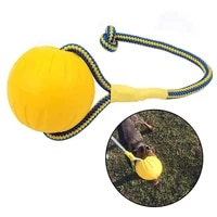 eva floating pet ball durable tranning puppy bite resistant ball with rope pet training ball