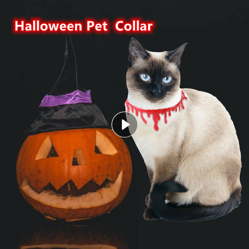 Collar de sangre para mascotas, accesorios decorativos de Halloween para perros, cachorros...