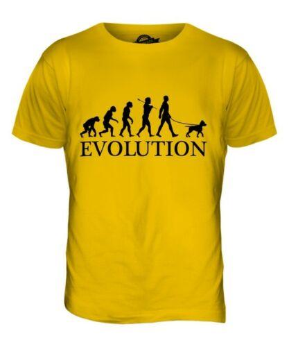 American pit bull terrier evolução do homem camiseta masculino camiseta presente superior