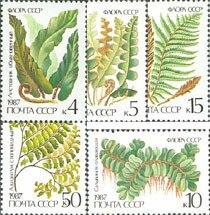 5 unids/set nuevo CCCP Post Stamp 1987 plantas de helecho USSR sellos MNH