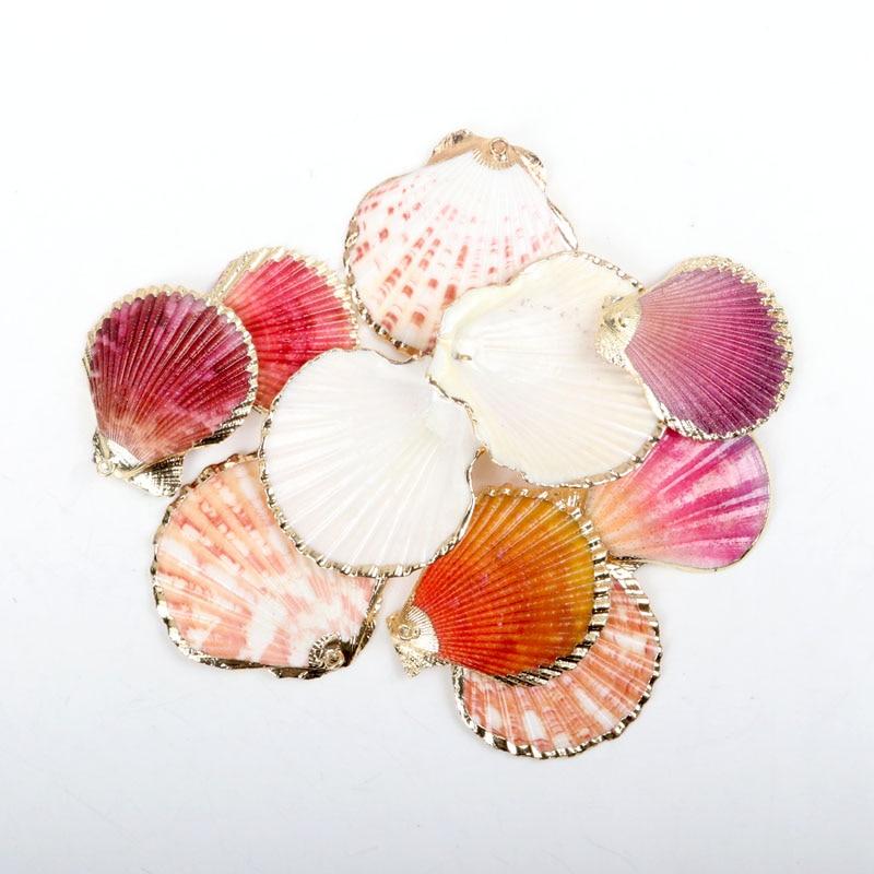 Coquillières plaquées or de décoration   Coquille de secteur naturel, pour le bricolage, décoration de maison, bijoux de fabrication 5 pièces