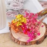 30pcs little star dried flower gypsophila daisy art flower shooting props diy garden outdoor wedding decoration accessories