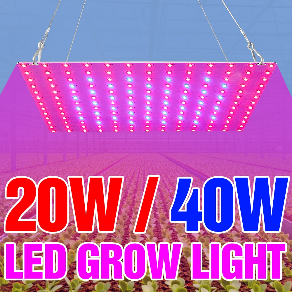 LED Phyto Lamp Full Spectrum LED Grow Light 20W 40W LED Plant Light For Indoor Seedlings Flower Fitolampy Grow Tent Hydroponics greenhouse led grow light e27 15w 21w 27w 36w 45w 54w led grow lamp for plants flower plant orchids seedlings hydroponics system