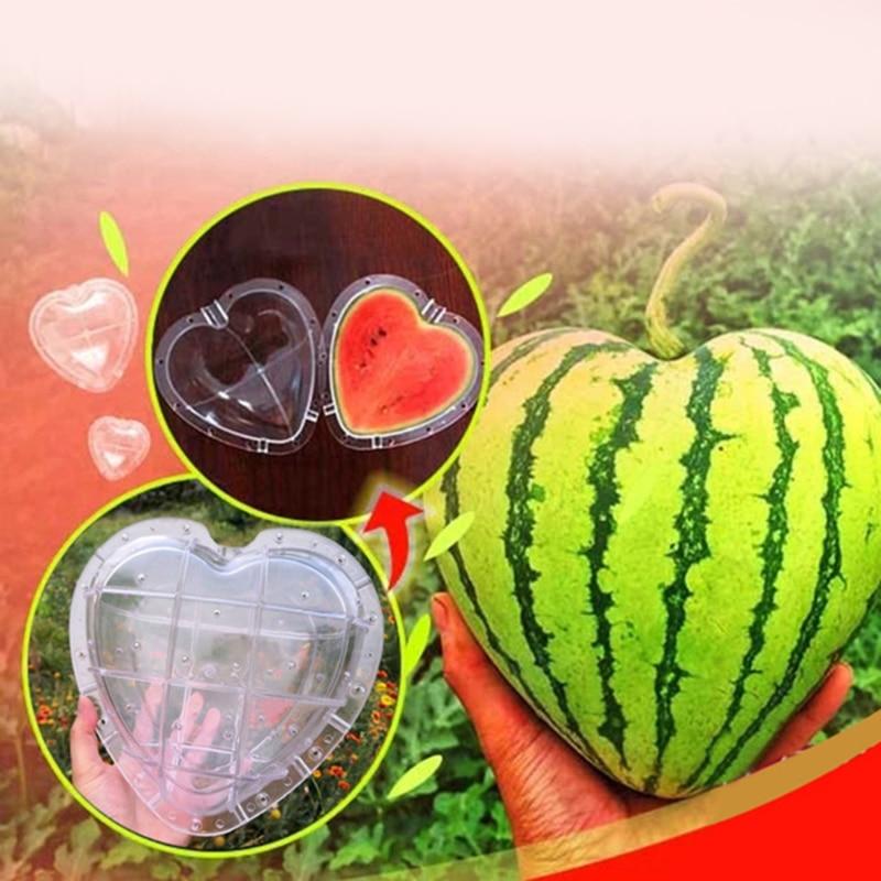 ماجيك على شكل قلب البطيخ تشكيل النمو قوالب ماجيك القلب الفاكهة قالب الحضانة الأواني الفاكهة 17*17 سنتيمتر صب قالب ثابت