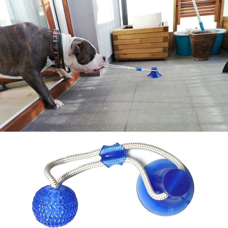 dog toy ball pet toy bite resistant sound making elastic ball large dogs molar golden retriever teddy tooth cleaning training ba Dog Interactive Suction Cup Push TPR Ball Toys Pet Molar Bite Toy Elastic Ropes Dog Tooth Cleaning Chewing Pet Puppy Dog Toys