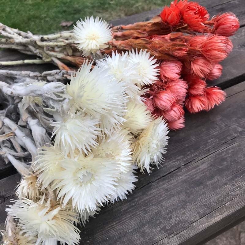 Ramo de flores naturales secas auténticas de 30- 40g, ramo decorativo de flores secas para decoración del hogar